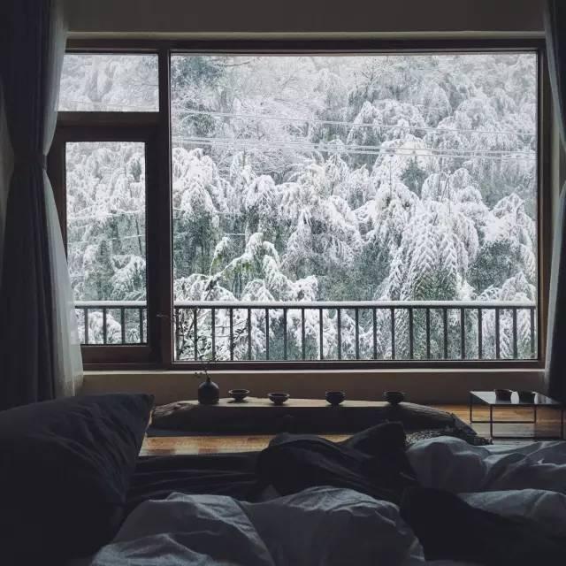 尤其是在这山间民宿,裹在被子里,隔着窗户看外面的雪景,简直是人生一